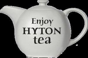 HYTON. Чайник Эталон 80 гр. чайница керам.